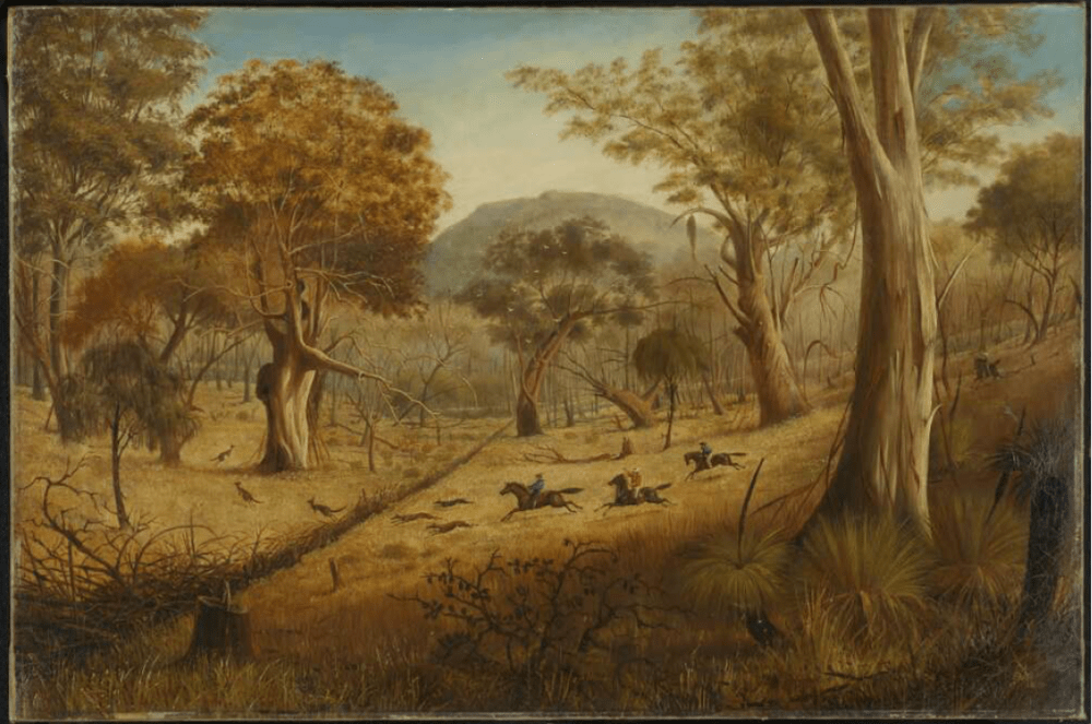 the art of the colonial kangaroo hunt
