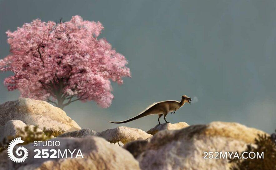 pachycephalosaurus and magnolia julio lacerda